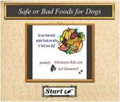 Dog Food Quiz