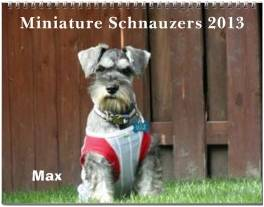 Miniature Schnauzers 2013 Calendars