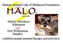 Harley Davidson Therapy Dog