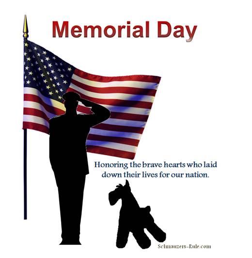 Memorial Day Pet Tips