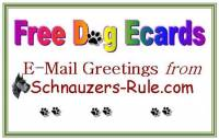 dog ecards, free dog ecards, Schnauzer ecards
