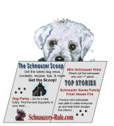 schnauzer, dog newsletter, dog news, schnauzer news, miniature schnauzer info
