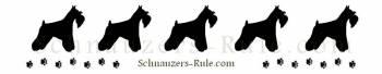 Miniature Schnauzers Rule