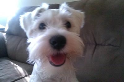 My happy boy