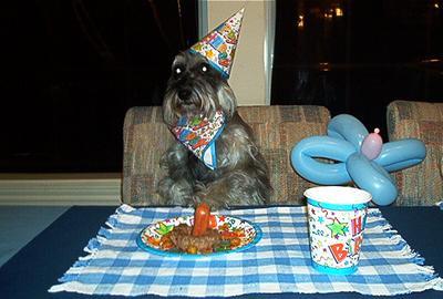 Danka's 6th. B-Day party