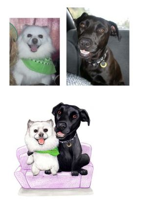 Pet Christmas Cards Personalized