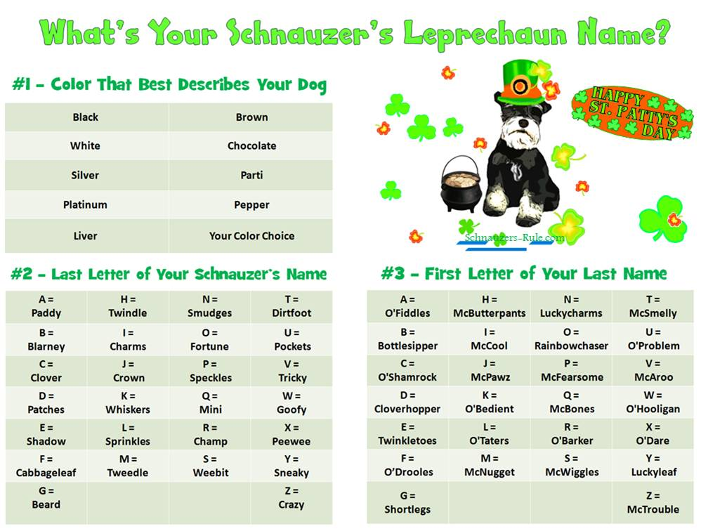 Leprechaun Name Generator for Dogs