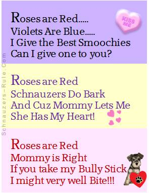 Valentines Day Dog Poems