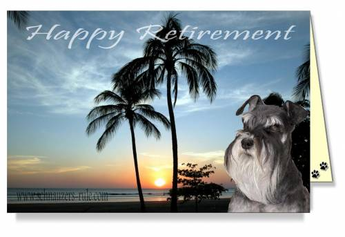 Schnauzer dog ecards happy retirement ecard m4hsunfo