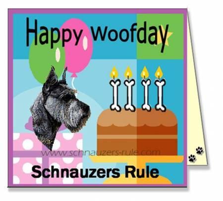 Cute Pet Birthday E Card Dog Ecard Schnauzer