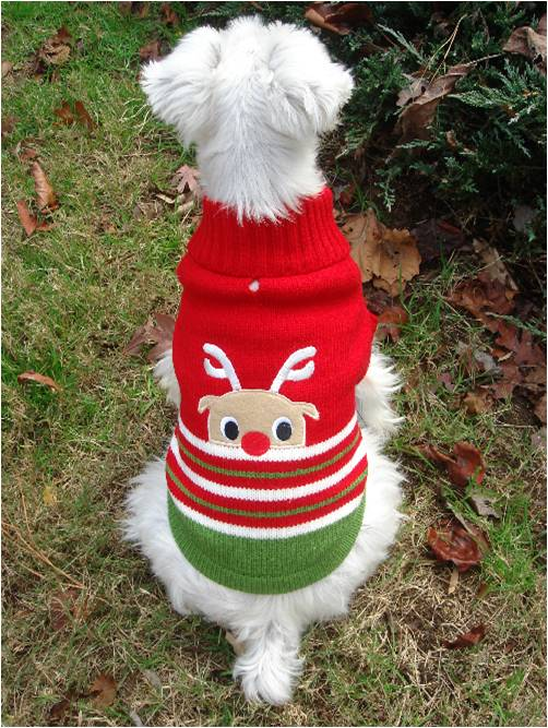 foufou dog sweater