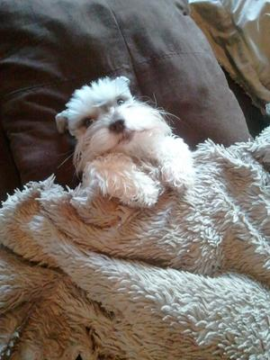 What? I sleep like people, no big deal.