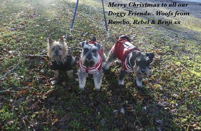 We love Christmas..