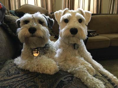 Max & Jack