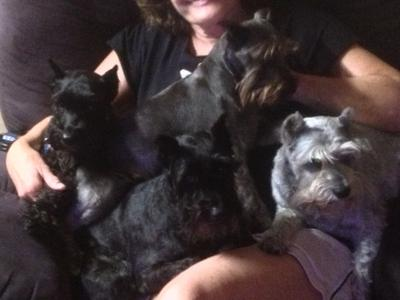 All the girls in my lap
