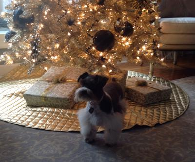 Demi Shae under the tree