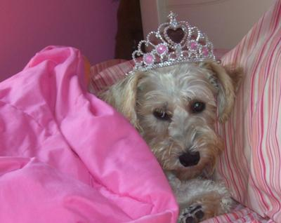 Princess Almond