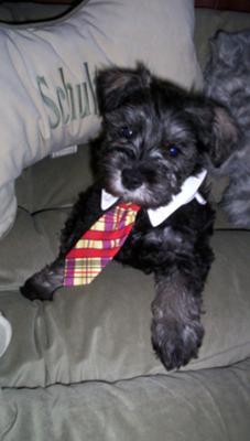 Rockin the neck tie!