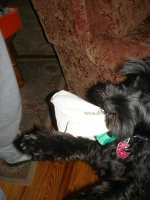 Emma grabbing her Christmas present