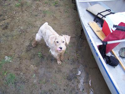 Ghost loves to go canoeing