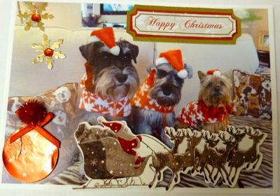 We are Santa's Little Helpers...