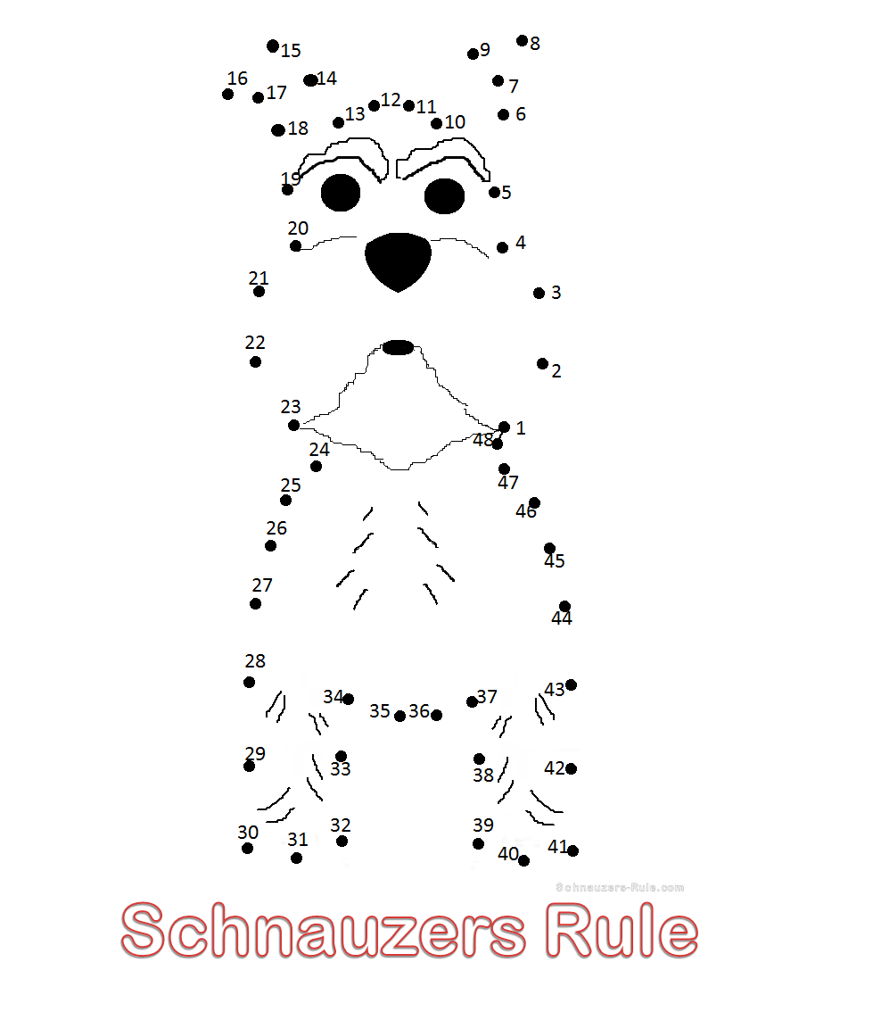 Mini Schnauzer Connect-the-Dots drawing
