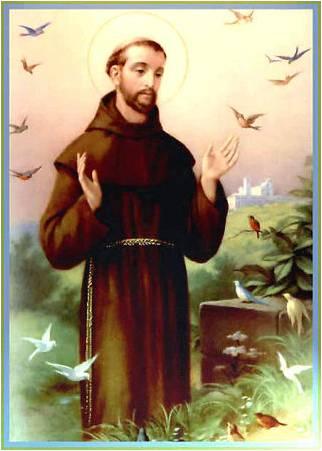 Saint Francis Bless Animals