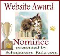 pet website award