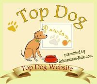 dog website award