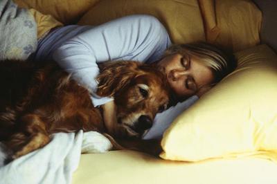 dog barks in sleep