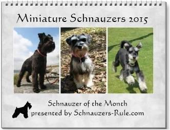2015 Schnauzer Calendar