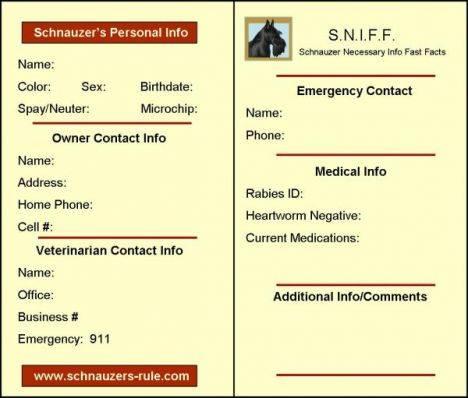 Dog Info Card
