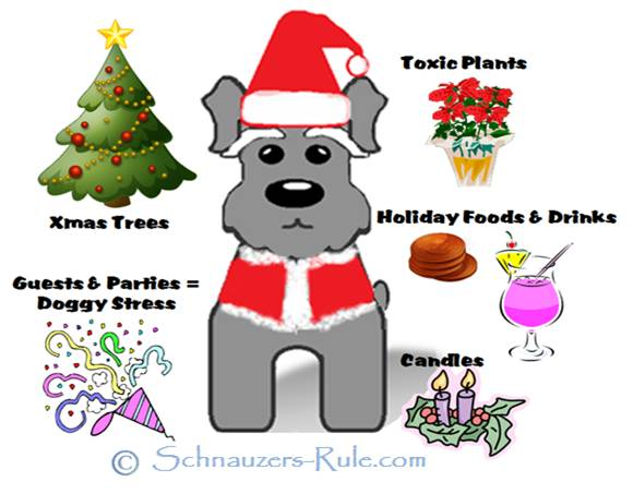 Dog Safety Holiday Tips