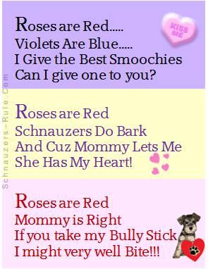 Valentines Day Dog Poem
