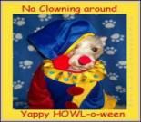 schnauzer halloween, free halloween dog e-card