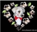 Love e-card, dog ecard, schnauzer card