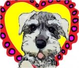 Valentine ecard, dog ecard, schnauzer card