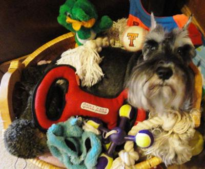Walker and his toys!