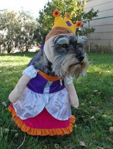 Lexie Princess