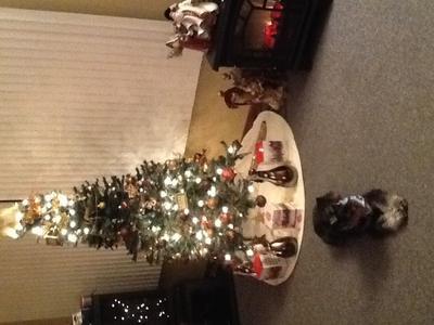 Waiting for Christmas!